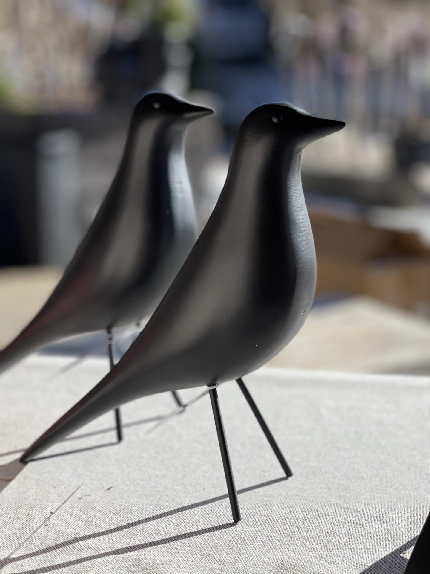 Fugl, stor